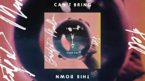 Bridgit Mendler x Pell - Can't Bring This Down Audio