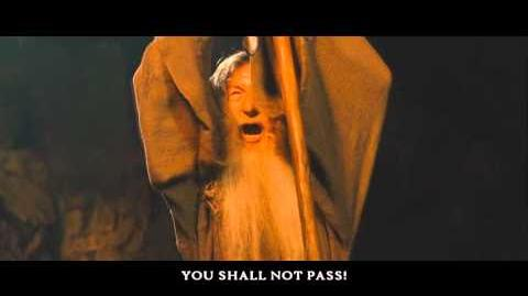 "Best & Favorite Lord of the Rings Quotes - ""You Shall Not Pass!"" (Gandalf)"
