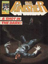 Punisher9
