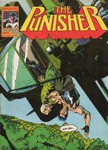 Punisher7