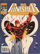Punisher20