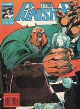 Punisher25