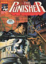Punisher6
