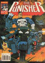 Punisher17