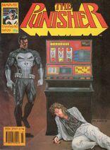 Punisher29