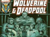 Wolverine and Deadpool Vol 6 3