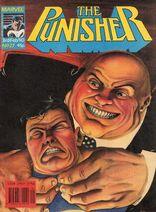Punisher27