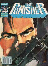 Punisher24