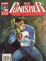 Punisher23