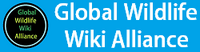 Global wiki alliance logo