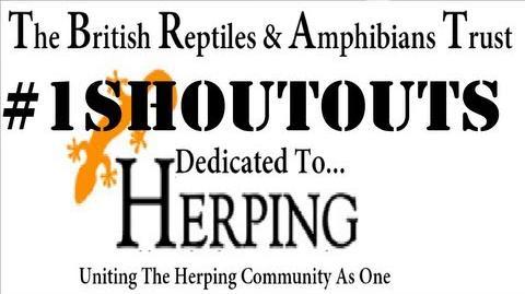 British Reptiles & Amphibians Trust - Shoutouts 1