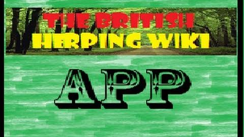 "British Herping Wiki APP! Updated - Plus Lots of other Apps ""iOS & Android Compatible"""