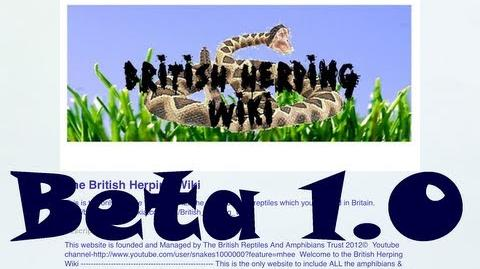The British Herping Wiki App Beta