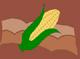 Corn field CM