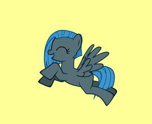 June Gloom Pony Flying