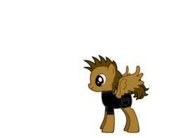 Pegasus Cal