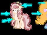 Angel Ponies