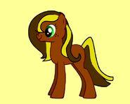 Shiraz Pony