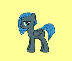 June Gloom Pony