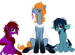 Phor Hush Moray Ponies