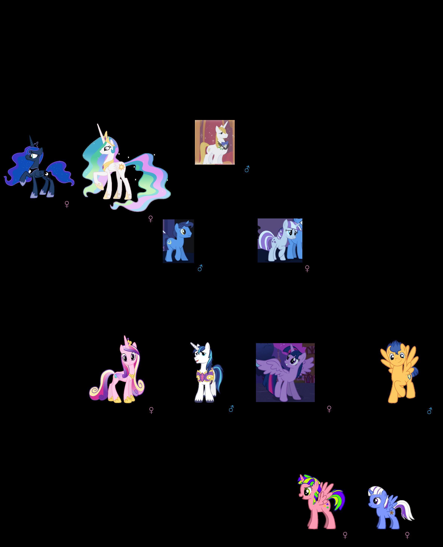 Image My Little Pony New Family Tree Png Bronies Wiki Fandom