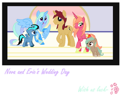 Nova wedding