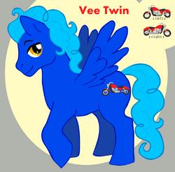Veetwin profile