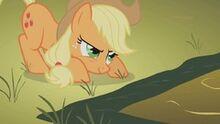 Aj en la competencia pony de hierro