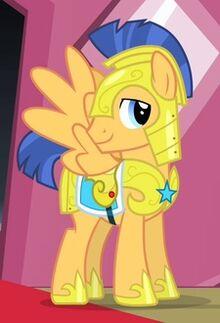 Flash sentry