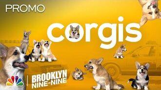 A Bunch of Adorable Corgis and the Greatest Heist Ever - Brooklyn Nine-Nine