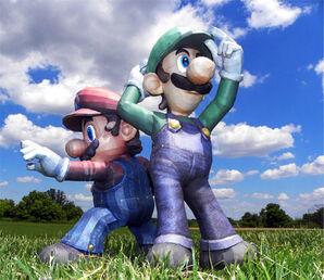 SSBB Mario and Luigi