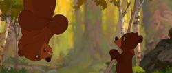 Brother-bear-disneyscreencaps.com-3609
