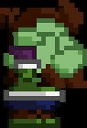 Green reeoh duck (1)