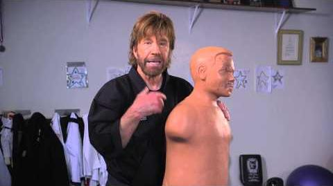 ChuckNorris Bruce Lee & I would have done well in MMA