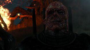 Imlerith face flesh melted