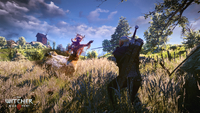 The Witcher 3 Wild Hunt Geralt fighting a Noonwraith