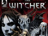 The Witcher: House of Glass