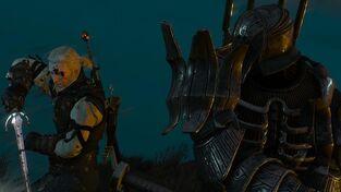 Imlerith battling Geralt