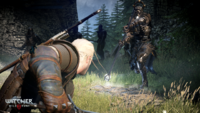 The Witcher 3 Wild Hunt Geralt battling a general of the Hunt