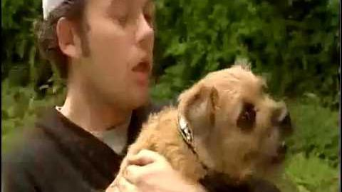 Brum and the Diamond Dog