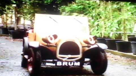 Brum Bushes On The Run