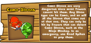 Camo Bloon Description