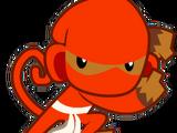 Ninja Monkey