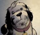 Galileo (dog)