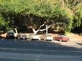 Griffithpark-lamppost-2007.jpg