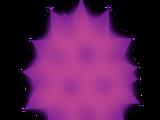 Urchin Egg