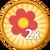 2x Flowers