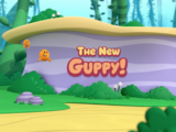 The New Guppy!