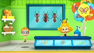 Bugs25