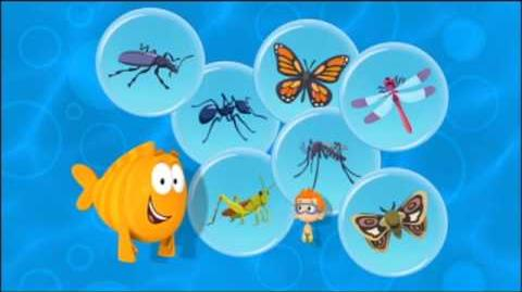 Bubulle Guppies - Les insectes-0